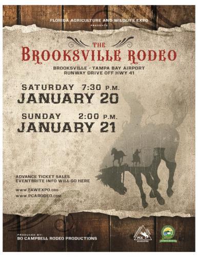 Brooksville flyer